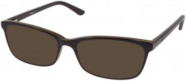 Barbour B056-53 sunglasses in Brown