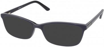 Barbour B056-51 sunglasses in Brown