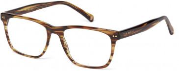 Ted Baker Glasses TB8162 in Tortoise