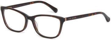 Ted Baker TB9176 glasses in Tortoise
