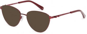 Ted Baker TB2252 sunglasses in Burgundy