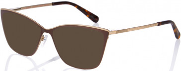 Ted Baker TB2236 sunglasses in Brown
