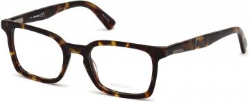 Diesel DL5278 Glasses in Tortoise