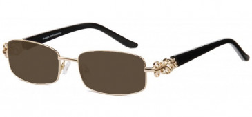 SFE Prescription Metal Sunglasses