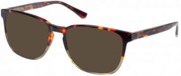 Superdry SDO-BARNABY Sunglasses in Gloss Tortoise
