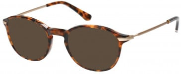 Superdry SDO-FRANKIE Sunglasses in Gloss Tortoise/Gold
