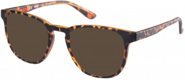 Superdry SDO-UNI Sunglasses in Matte Tortoise