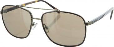 Jasper Conran JCMSUN16 sunglasses in Tortoise