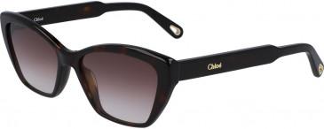 Chloé CE760S sunglasses in Tortoise
