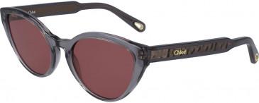 Chloé CE757S sunglasses in Grey