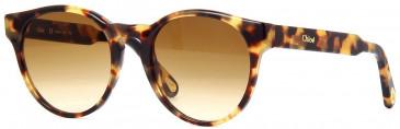 Chloé CE753S sunglasses in Tortoise