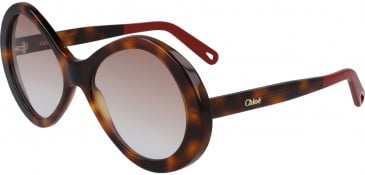 Chloé CE2743S sunglasses in Tortoise