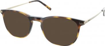 Barbour B069 sunglasses in Tortoise