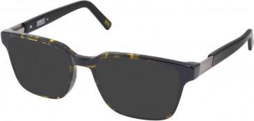 Barbour BI-030-52 sunglasses in Blonde/Tort