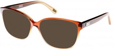Barbour BI-016 sunglasses in Brown