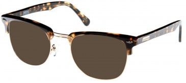 Barbour BI-011-52 sunglasses in Tort