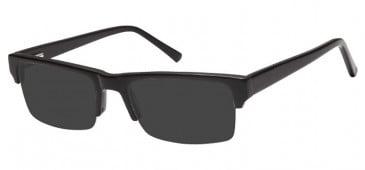 SFE Ready-Made Reading Plastic Sunglasses
