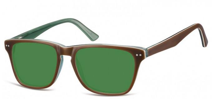 Sunglasses in Brown/Green