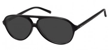 SFE Large Plastic Sunglasses
