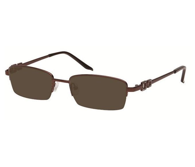 Sunglasses in Bronze