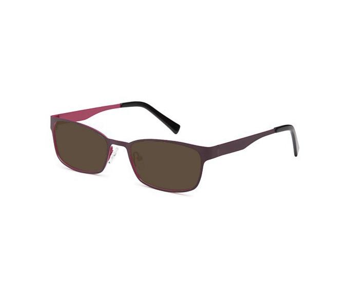 SFE sunglasses in Wine/Purple