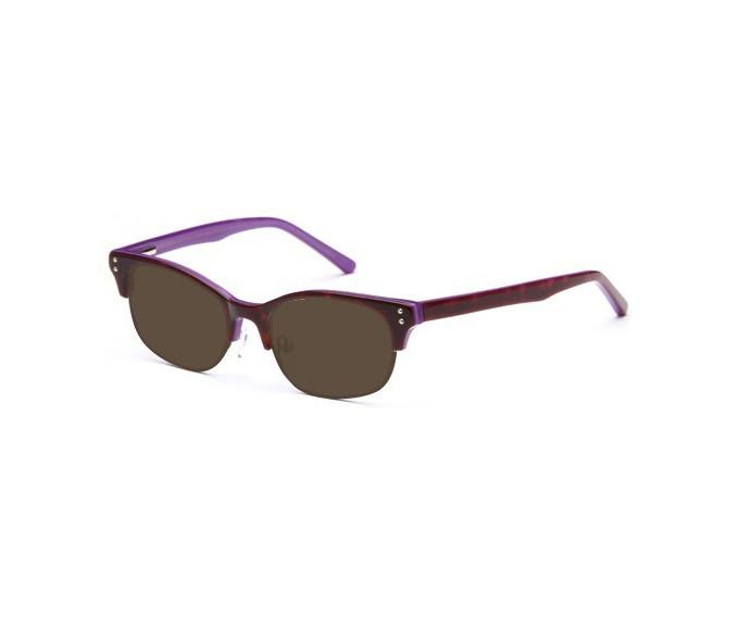 SFE sunglasses in Demi/Purple