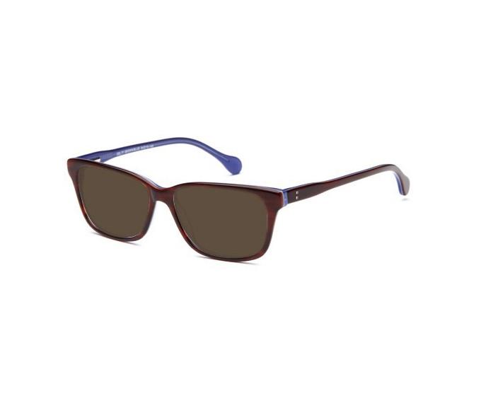 SFE sunglasses in Brown/Blue