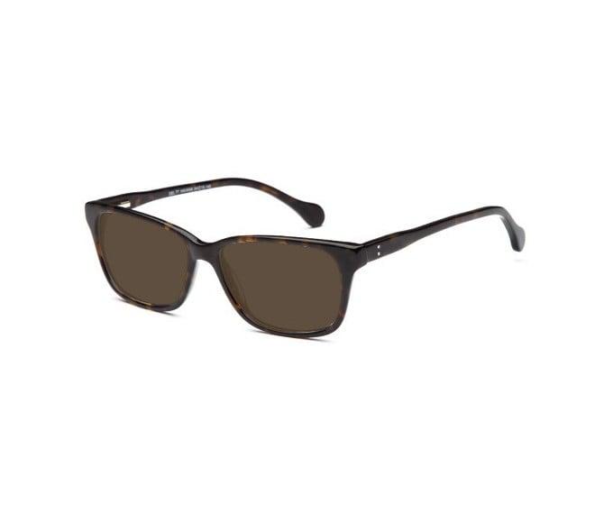 SFE sunglasses in Havana