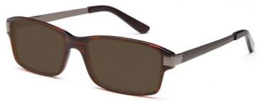 SFE (8325) Large Prescription Sunglasses
