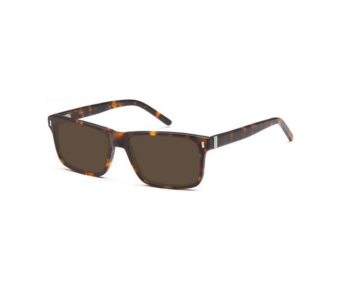 SFE sunglasses in Matt Havana