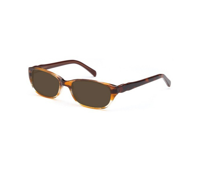SFE reading sunglasses in Brown
