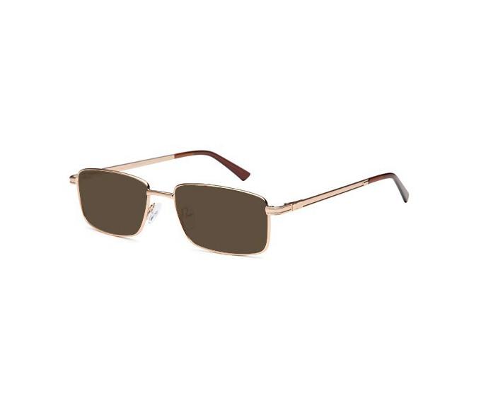 SFE reading sunglasses in Gold