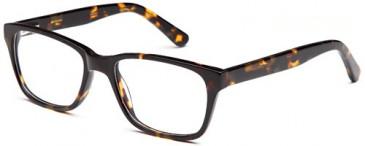 Kids glasses in Havana
