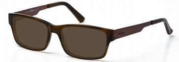 Lee Cooper LC9040 glasses in Brown
