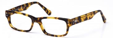 Crosshatch CRH112 glasses in Demi Brown