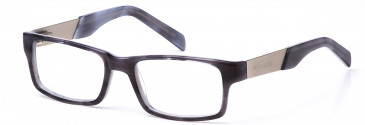 Crosshatch CRH116 glasses in Grey