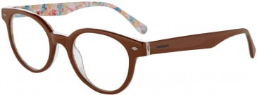 Cacharel CA3022 Glasses in Brown