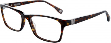 Cacharel CA3027 Glasses in Tortoiseshell