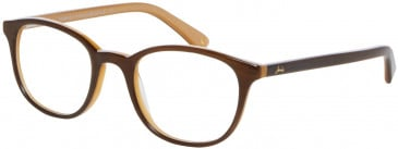 Joules JO3017 Glasses in Brown/Yellow
