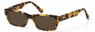 Crosshatch CRH112 Sunglasses in Demi Brown