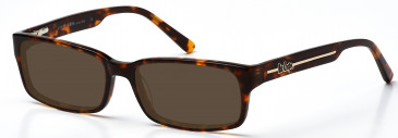 Lee Cooper LC9042 sunglasses in Brown Demi