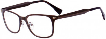Ted Baker TSS402 Glasses in Bronze