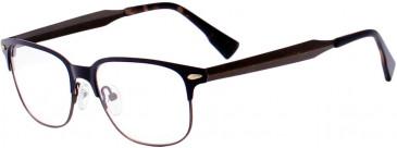Ted Baker TSS401 Glasses in Bronze