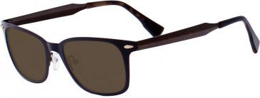 Ted Baker TSS402 Sunglasses in Bronze
