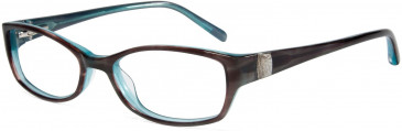 Jones New York JNY J214 Glasses in Brown/Blue