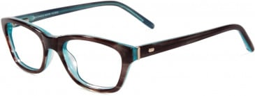 Jones New York JNY J221 Glasses in Brown/Blue