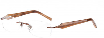 Jones New York JNY J123 Glasses in Brown