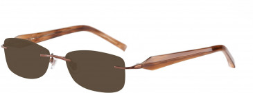 Jones New York JNY J123 Sunglasses in Brown