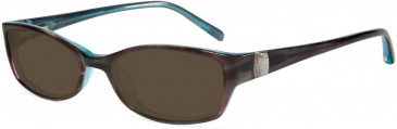 Jones New York JNY J214 Sunglasses in Brown/Blue