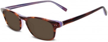 Jones New York JNY J222 Sunglasses in Brown